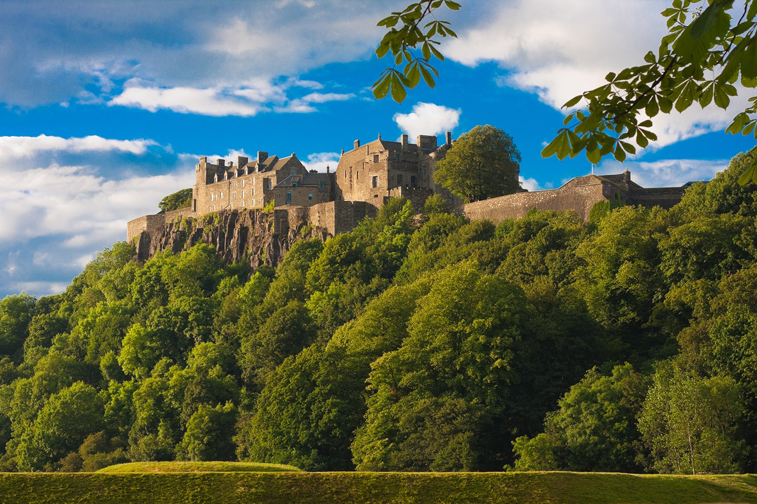 A lovely photograph of Stirling Castle which can be visited on a bespoke tour of Scotland